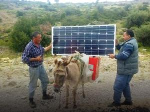 solar-donkey