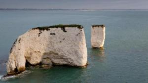 old harry NT